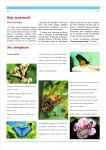publ25_page5