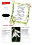 publ48_page4